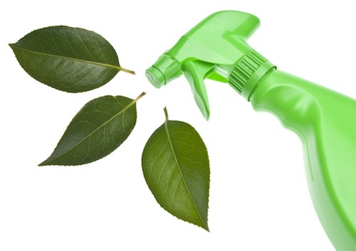 Green cleaning alternatives for commercial businesses in Portland, OR